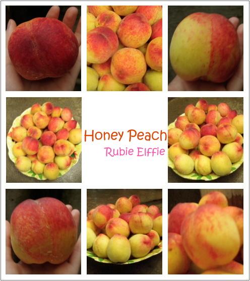 honeypeach2.jpg