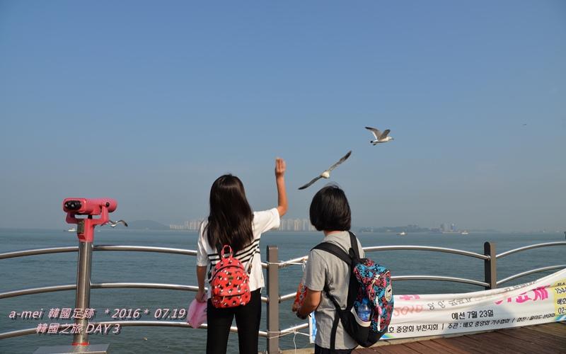 海鷗2.jpg