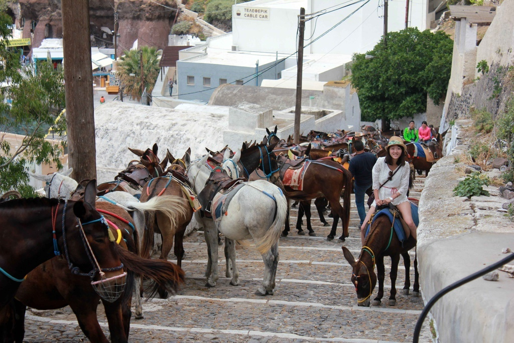 費拉Fira騎驢子 (4).jpg