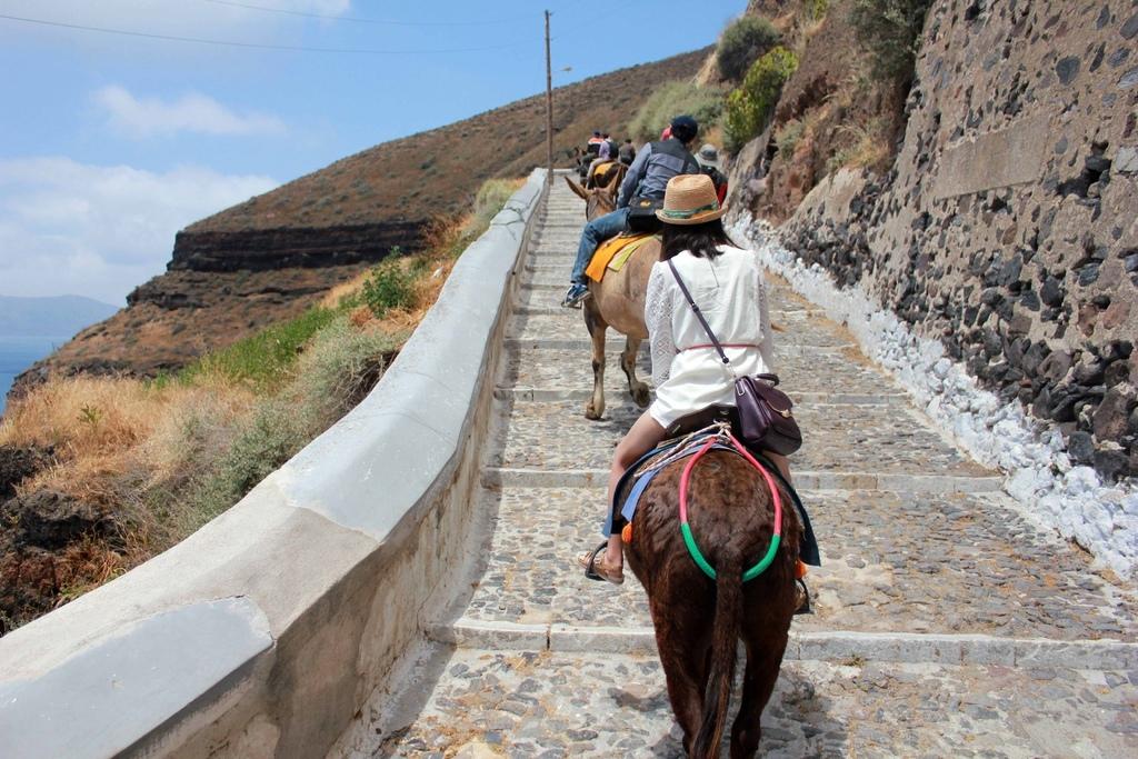 費拉Fira騎驢子 (7).jpg