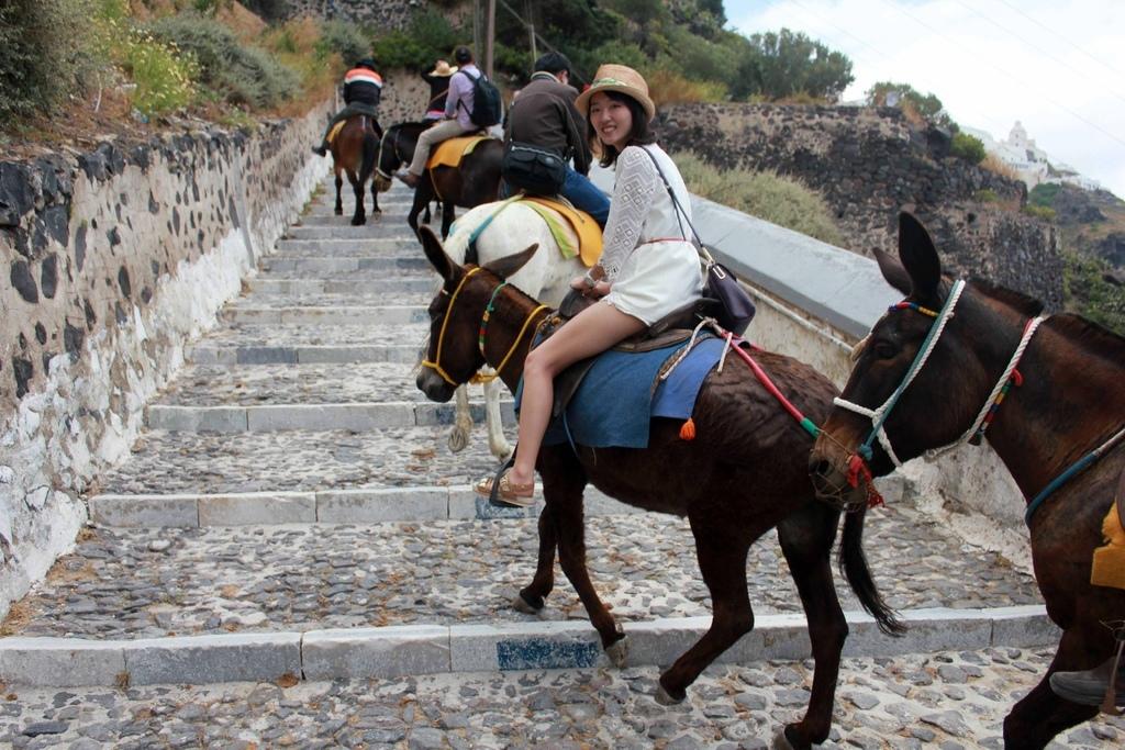 費拉Fira騎驢子 (33).jpg