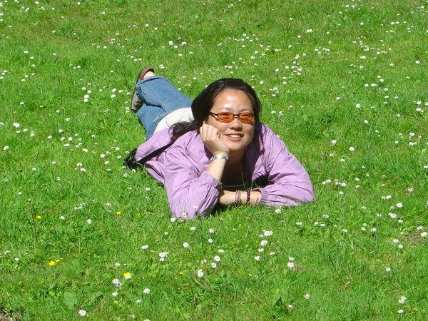開滿小花的草地