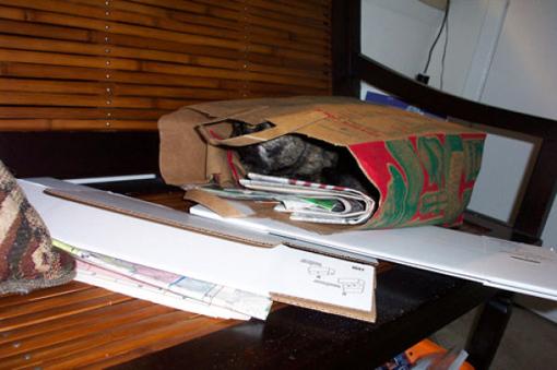 原來這就是躲貓貓的由來-17.jpg