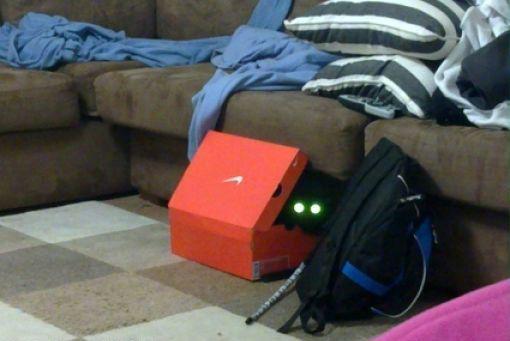 原來這就是躲貓貓的由來-20.jpg