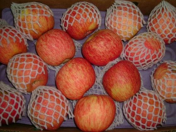 智利套袋富士蘋果-1.jpg