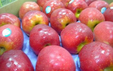 紐西蘭玫瑰富士蘋果.jpg
