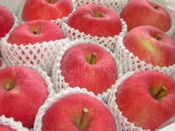日本套袋富士蘋果.jpg