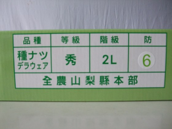 日本山梨縣溫室珍珠葡萄-2.jpg