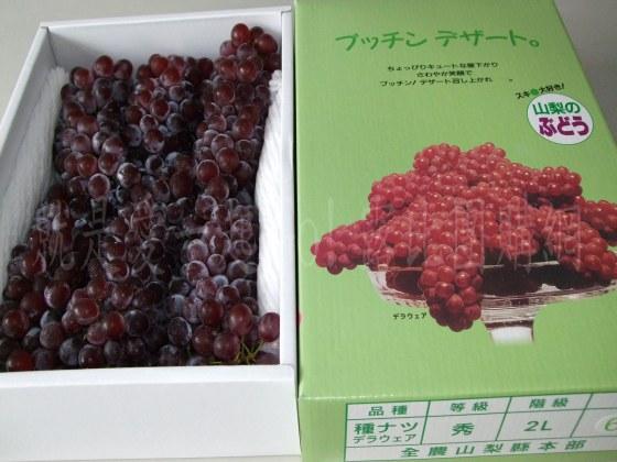 日本山梨縣溫室珍珠葡萄-4.jpg