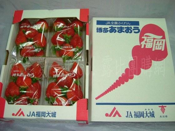 空運日本德島草莓.jpg