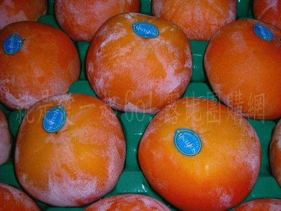 空運紐西蘭甜柿.jpg