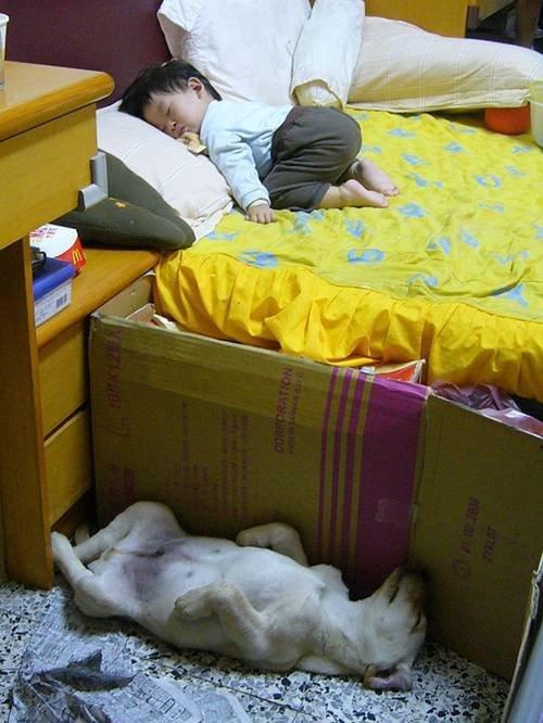 好好睡.jpg