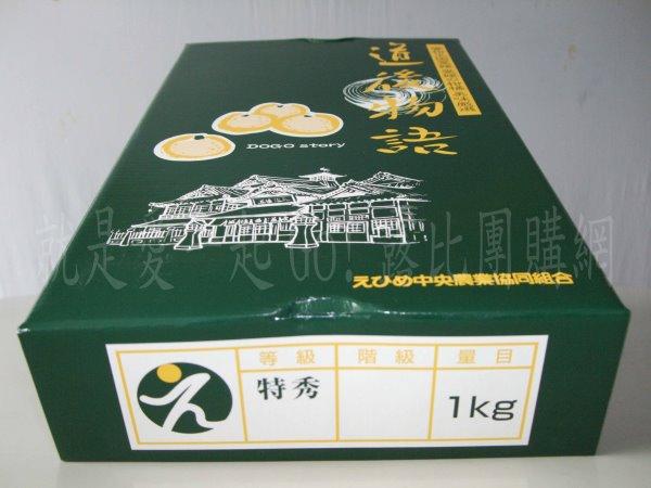 日本愛媛柑橘-2.jpg
