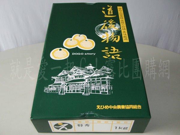 日本愛媛柑橘-3.jpg