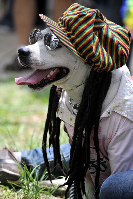 2009 哥倫比亞寵物節-3.jpg