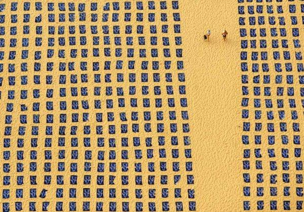 兩千條浴巾在日光浴-1.jpg