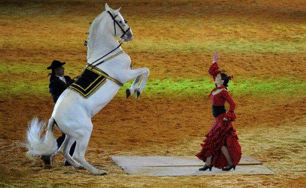 美女與駿馬同跳拉丁舞-1.jpg