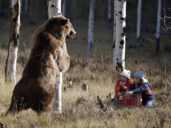 引熊入洞.jpg