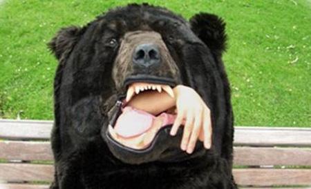熊吃人!真恐怖!-1.jpg