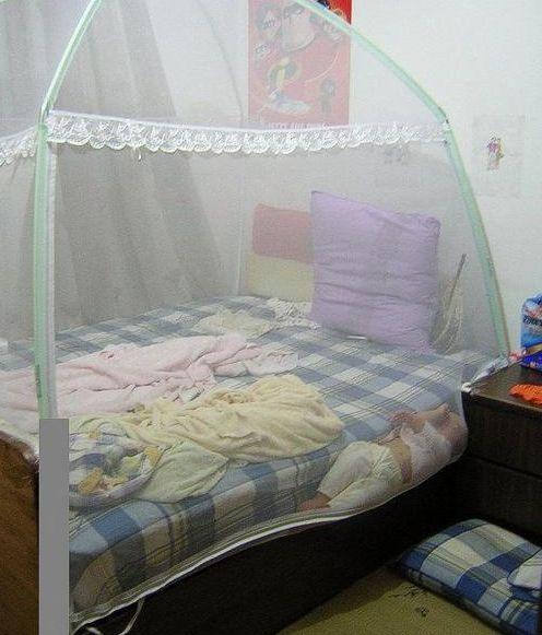蚊帳的另一個妙用.jpg
