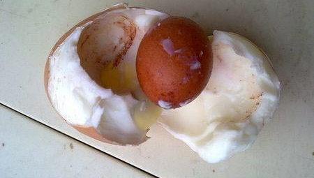 傳說中的蛋中蛋-3.jpg