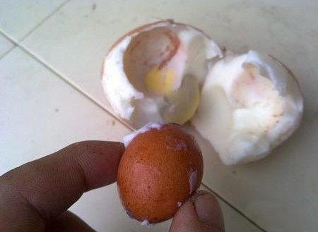傳說中的蛋中蛋-4.jpg