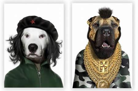 變成名人的狗-1.jpg