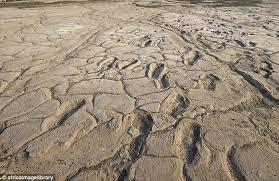 坦尚尼亞股人類腳印化石.jpg