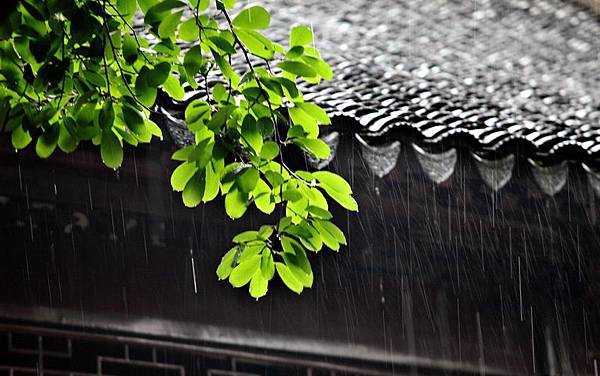 屋簷雨滴.jpg