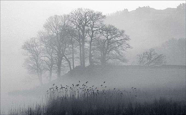 霧.png