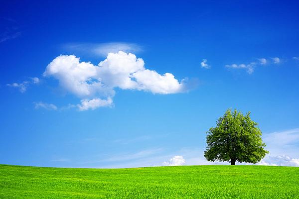 藍天綠地.png