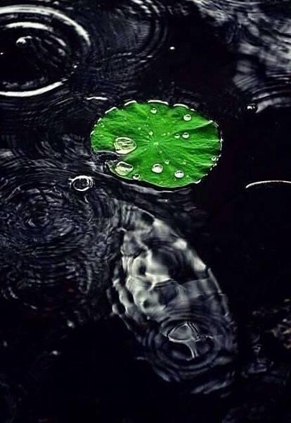 水滴.jpg