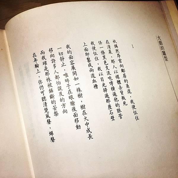 洛夫石室之死亡開卷詩.jpeg