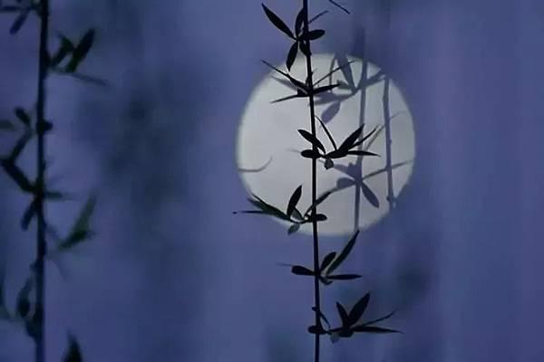 月.jpeg