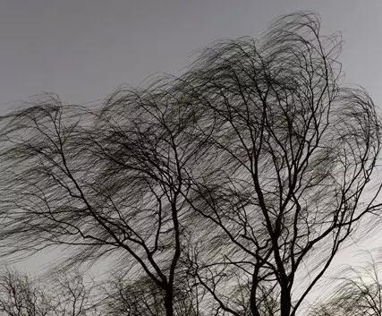 風.jpg