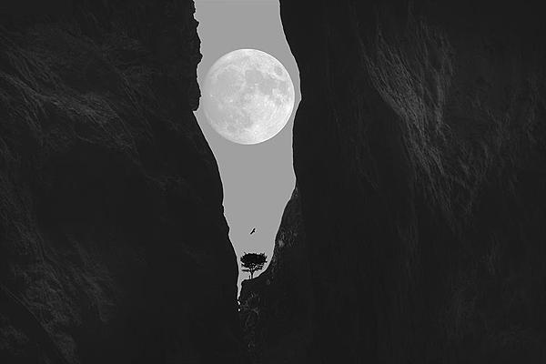 月.png