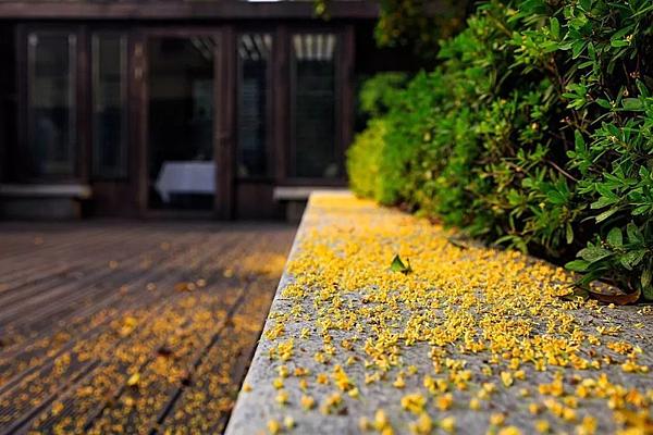 南京朝天宮.png