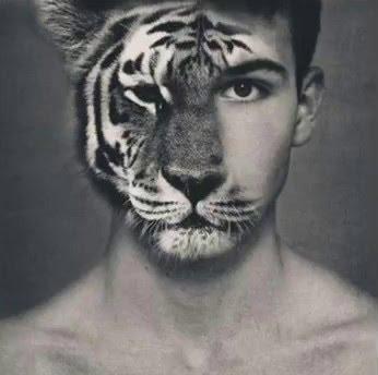 人體動物.png