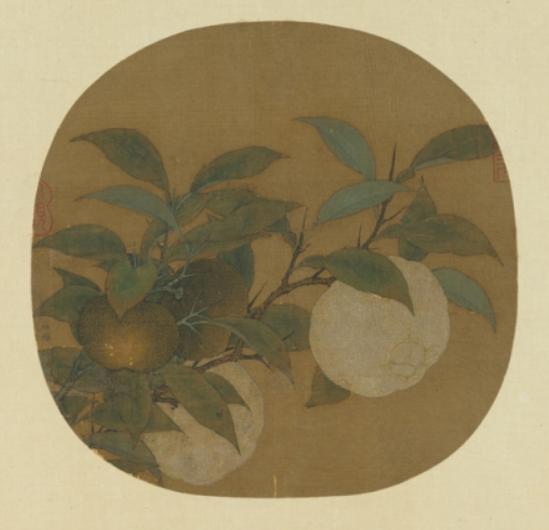 林椿橙黃橘綠.png