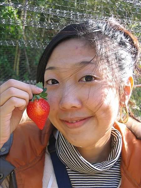 96.01.28大湖採草莓88