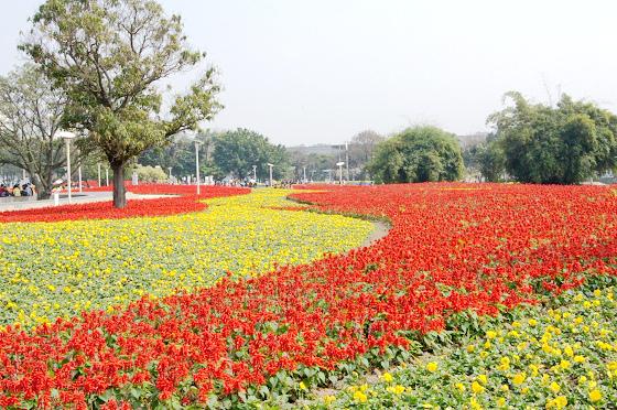 2010台北國際花卉博覽會.影像紀錄1