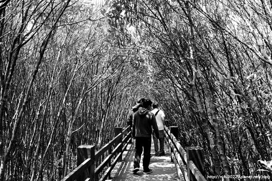 阿廣的「環島.人」攝影展13