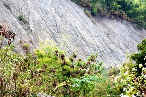 《廣遊記》台南篇:山.左鎮21
