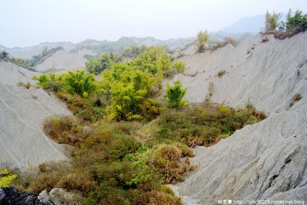 《廣遊記》台南篇:山.左鎮29