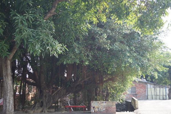 《廣遊記》台南篇:地.後壁28