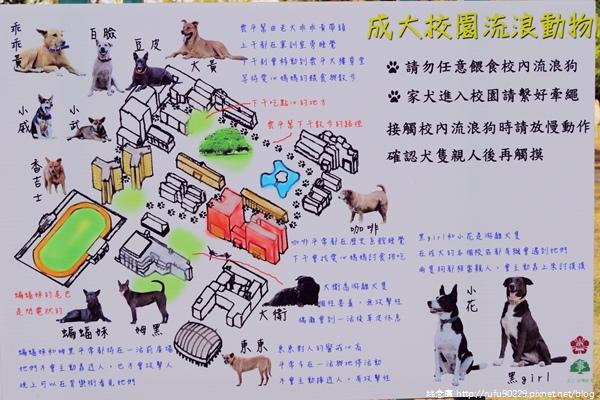 《廣遊記》台南篇:市.東區19