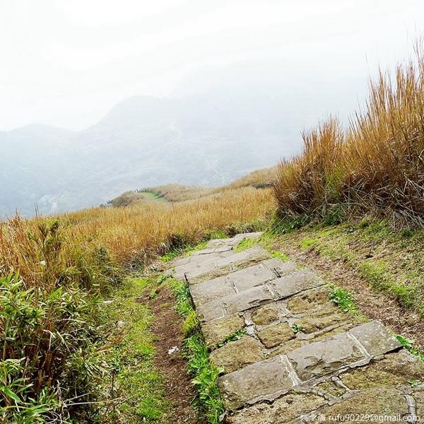 登山,看過不一樣的風景以後,要下山時,才發現自己是踏了比想像中還要陡峭的難途才上來的,忽然就覺得山路變得可怕,往下走的每一步都要很穩,不然,一失足可能就至谷底。我覺得下山比上山還難。