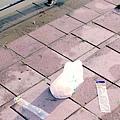 永和:世界豆漿大王.綠寶石運動河濱公園13