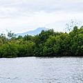 05龍尾灣自然生態保護區