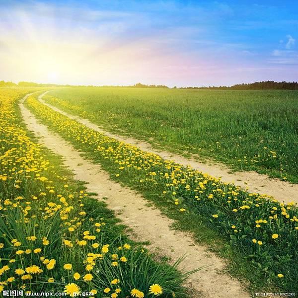 圖4 師父,照亮前方的路,未來,築夢踏實